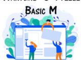 Wartungs- & Pflegevertrag Basic M